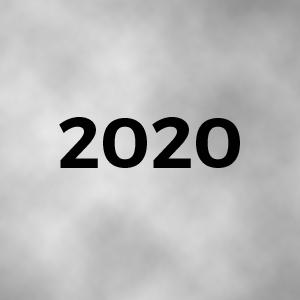 Activitats realitzades al 2020